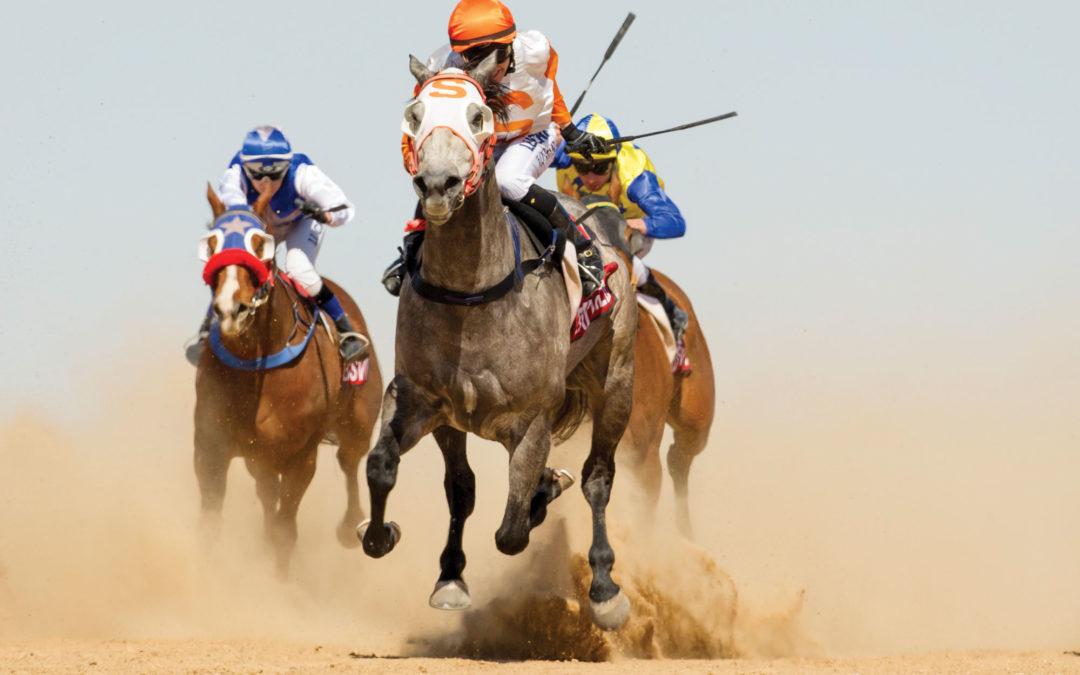 Iconic Birdsville Races cancelled for 2020